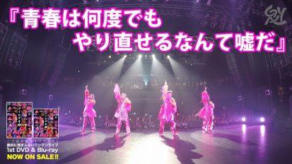 「ゲイビデオ❶ 」ライブDVD&Blu-ray
